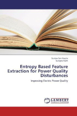 Entropy Based Feature Extraction for Power Quality Disturbances