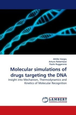 Molecular simulations of drugs targeting the DNA