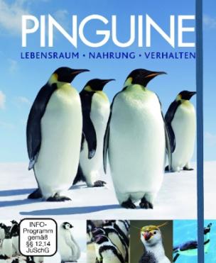 Pinguine, m. DVD