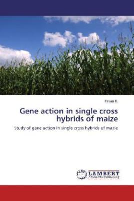Gene action in single cross hybrids of maize