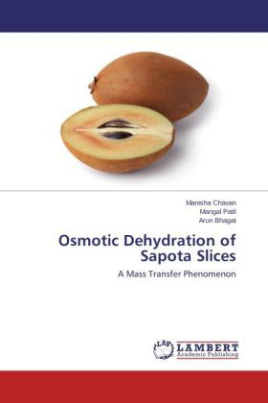Osmotic Dehydration of Sapota Slices