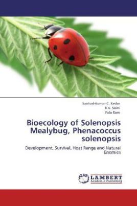 Bioecology of Solenopsis Mealybug, Phenacoccus solenopsis