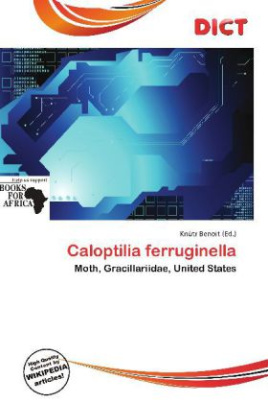 Caloptilia ferruginella