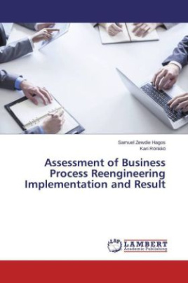 Assessment of Business Process Reengineering Implementation and Result