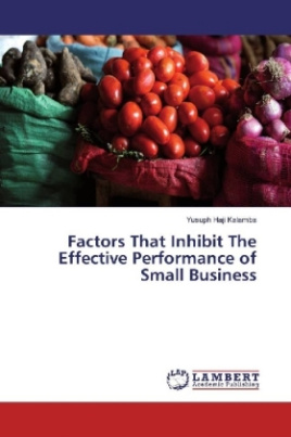 Factors That Inhibit The Effective Performance of Small Business