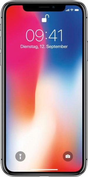 "APPLE Smartphone ""iPhone X"" (256 GB, space grau)"
