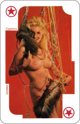 Erotik-Kartenspiel (52 Blatt + 3 Joker)