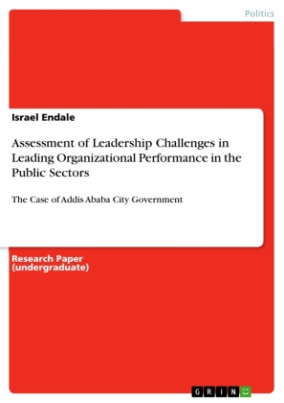 Assessment of Leadership Challenges in Leading Organizational Performance in the Public Sectors