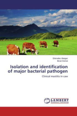 Isolation and identification of major bacterial pathogen