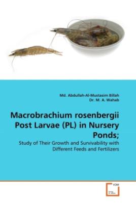 Macrobrachium rosenbergii Post Larvae (PL) in Nursery Ponds;