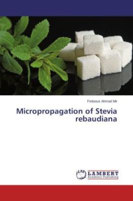 Micropropagation of Stevia rebaudiana