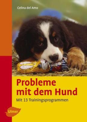 Probleme mit dem Hund verstehen und vermeiden