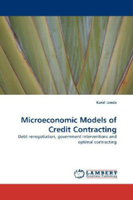 Microeconomic Models of Credit Contracting
