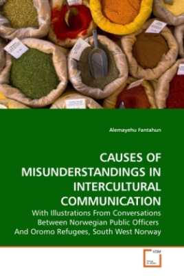 CAUSES OF MISUNDERSTANDINGS IN INTERCULTURAL COMMUNICATION