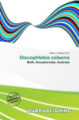 Discophlebia celaena