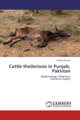 Cattle theileriosis in Punjab, Pakistan