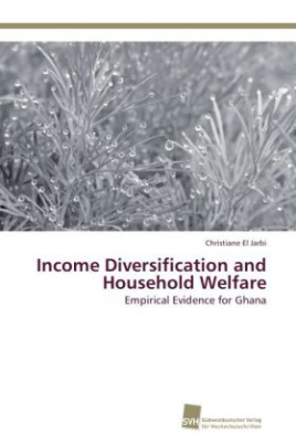 Income Diversification and Household Welfare